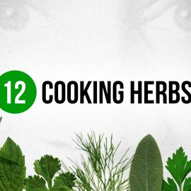 12 Cooking Herbs Every Cook Should Know and Use